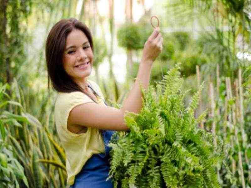 Gärtnern ist gut für die Psyche